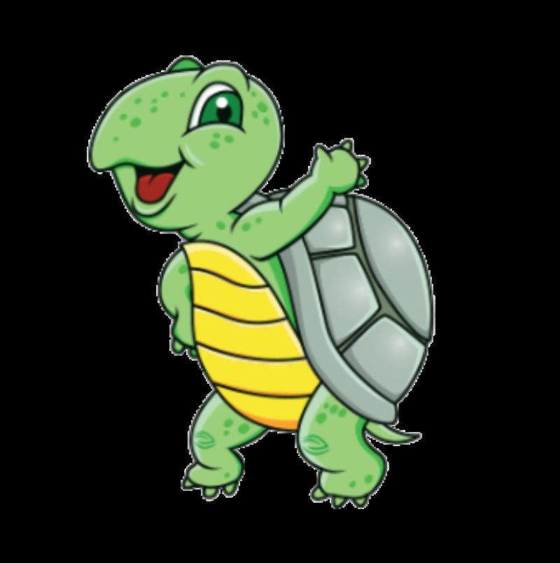 Le tartarughe